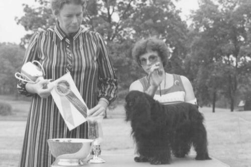 1981 Best of Breed Winner