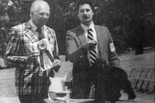 1982 Best of Breed Winner