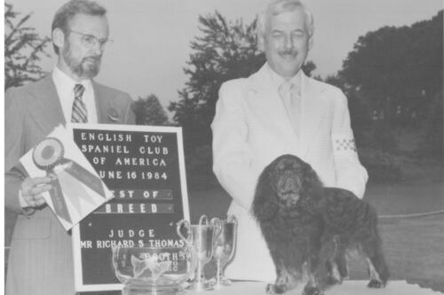 1984 Best of Breed Winner