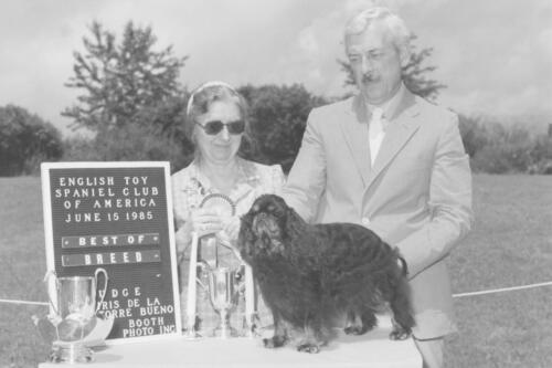 1985 Best of Breed Winner