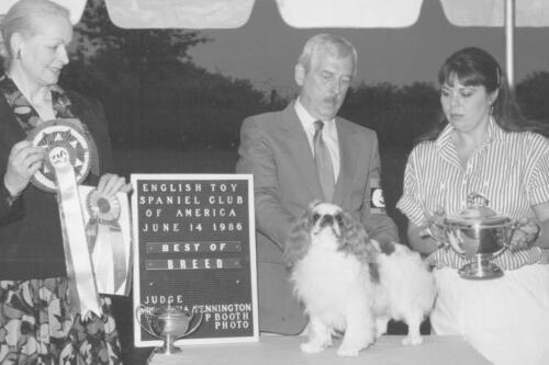 1986 Best of Breed Winner