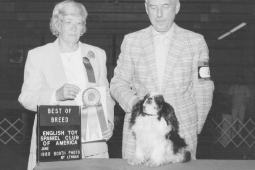 1989 Best of Breed Winner