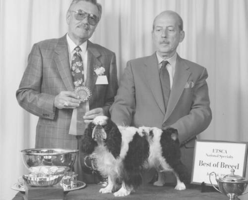 1991 Best of Breed Winner