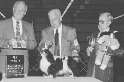1995 Best of Breed Winner