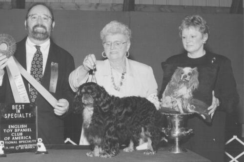 1998 Best of Breed Winner