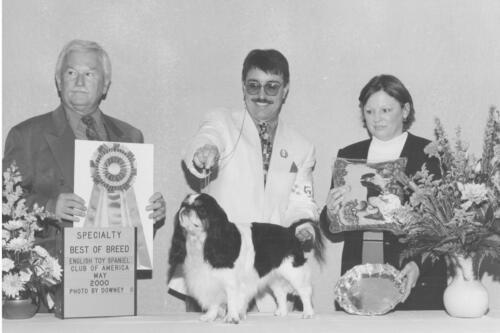2000 Best of Breed Winner