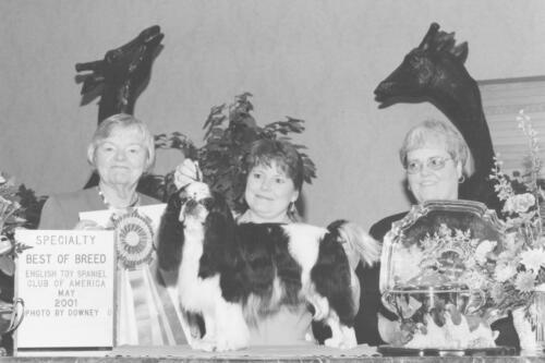 2001 Best of Breed Winner