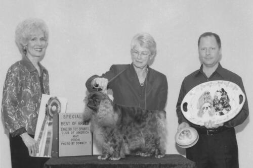 2004 Best of Breed Winner