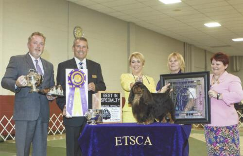 2015 Best of Breed Winner
