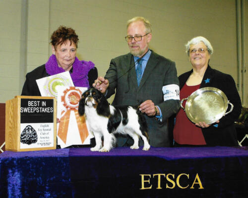 Best In Sweepstakes - Lipton Terje The People's Princess -Breeders/Owners: Susan Carter and Jeff Wright